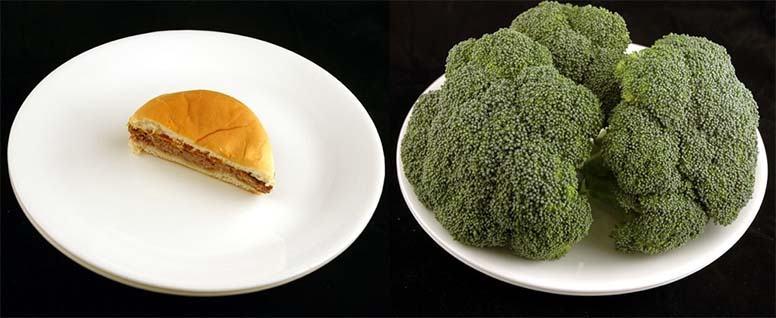 diferencia de calorias alimentos
